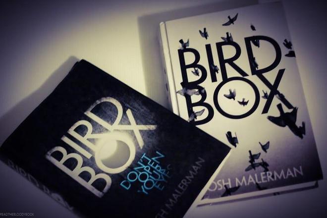 Che mắt cũng có thể nhìn ra 9 chi tiết thú vị được cài cắm trong Bird Box - Ảnh 1.