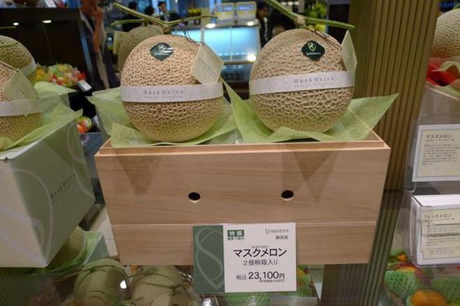 """Giờ đến trái cây cũng làm """"hàng hiệu"""", một quả xoài có giá hơn 6 triệu và có một nơi bán toàn hàng hiệu như vậy - Ảnh 6."""