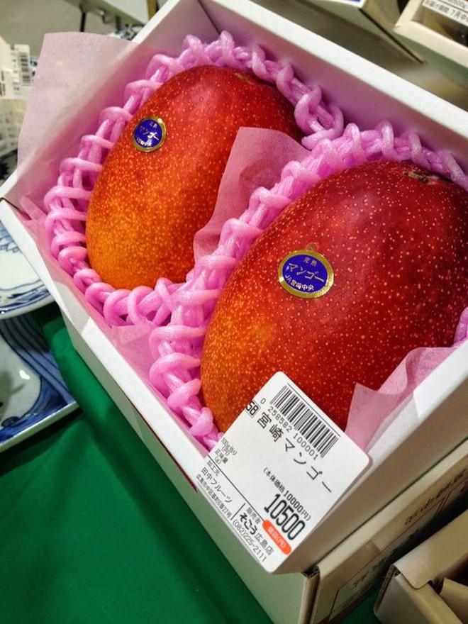 """Giờ đến trái cây cũng làm """"hàng hiệu"""", một quả xoài có giá hơn 6 triệu và có một nơi bán toàn hàng hiệu như vậy - Ảnh 7."""