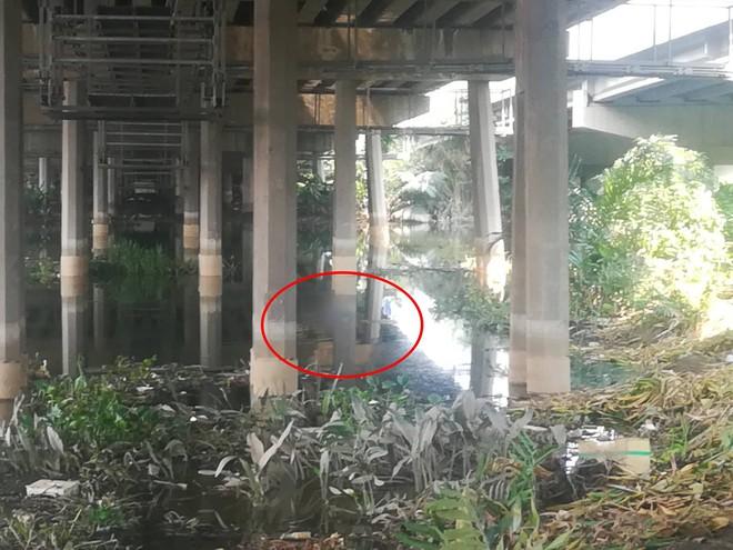 Cần thủ vứt cần câu bỏ chạy khi phát hiện thi thể cô gái nổi trên sông Sài Gòn - Ảnh 1.