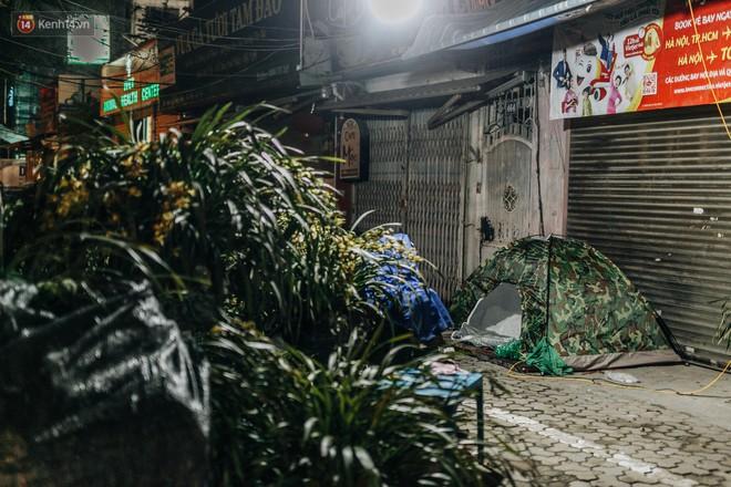 Hà Nội: Người dân dựng lều, trùm chăn canh đào quất cả đêm - Ảnh 7