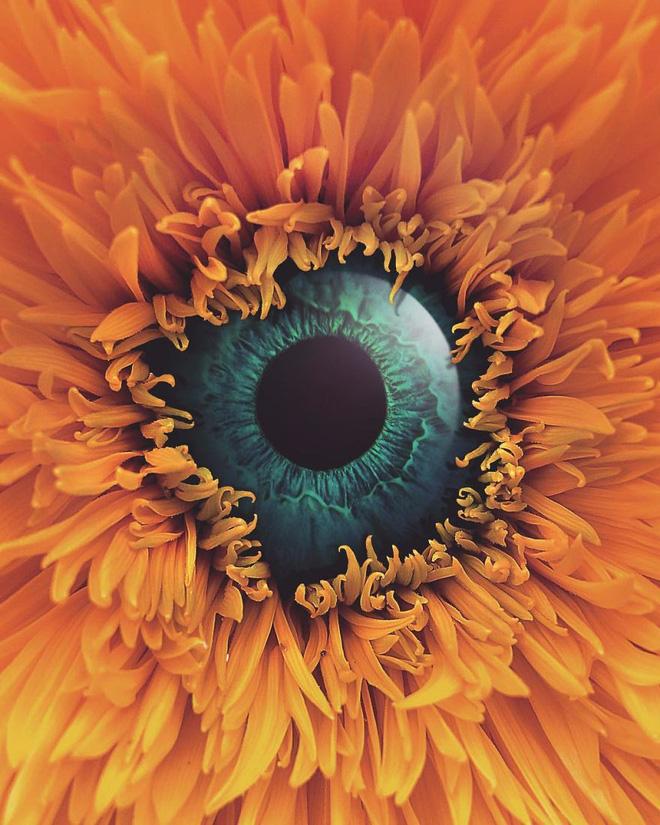 Từ mông lung đến ảo diệu, loạt ảnh siêu thực này khiến sự logic của bạn trở nên vô nghĩa - Ảnh 9.