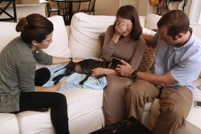 Chùm ảnh: Những khoảnh khắc cuối cùng của chủ nhân và chó mèo cưng trước khi nói lời vĩnh biệt - Ảnh 8.