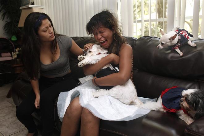 Chùm ảnh: Những khoảnh khắc cuối cùng của chủ nhân và chó mèo cưng trước khi nói lời vĩnh biệt - Ảnh 20.