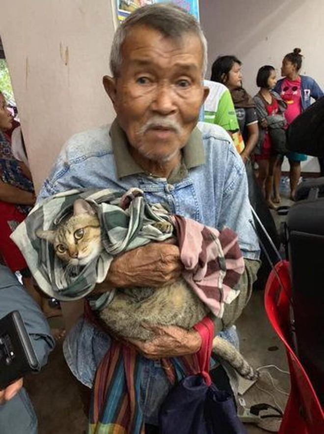 Cụ ông gây xúc động khi ôm khư khư chú mèo cưng đi tránh cơn bão lớn nhất 3 thập kỷ ở Thái Lan - Ảnh 1.