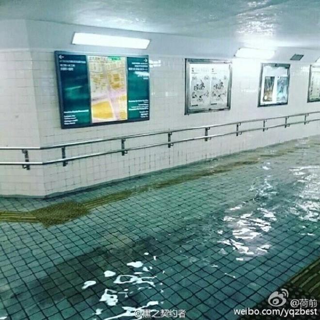 Cộng đồng mạng sửng sốt vì hình ảnh Nhật Bản ngập trong nước lũ vẫn sạch bong, không một cọng rác - Ảnh 4.