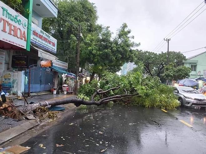 Đà Nẵng: Cây xanh đổ hàng loạt sau bão số 5, nhiều đoạn đường bị ngập khiến giao thông hỗn loạn - Ảnh 12.