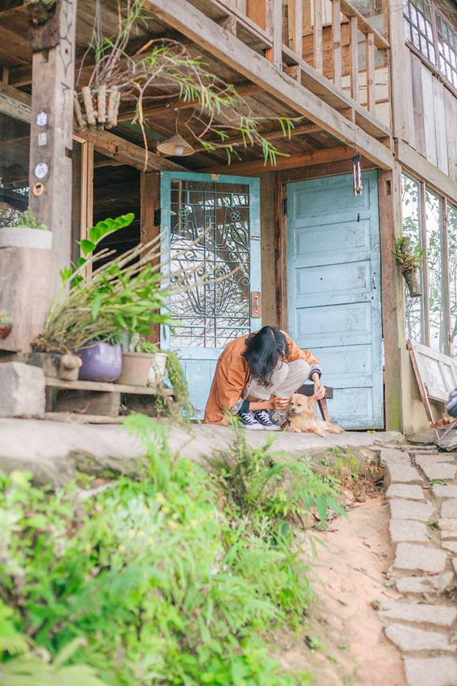 """Going to Da Lat to become a """"lotus"""" at 5 super cute dog cafes, now taking pictures to check-in with the new boss is a hot trend!  - Photo 30."""