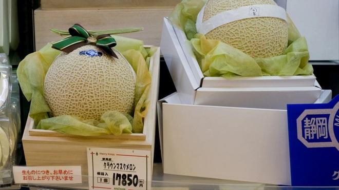 Câu chuyện đằng sau những trái dưa tiền tỉ của Nhật Bản: Căn nguyên từ tình yêu bất diệt của người trồng cây - Ảnh 3.