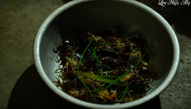 """Quỳnh Trần JP đăng vlog nấu bún riêu với… bạch tuộc có 1-0-2, nhưng dân tình lại chú ý hơn tới bình luận """"tung hứng"""" của Ẩm Thực Mẹ Làm - Ảnh 11."""