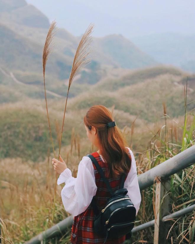 """""""Sống lưng khủng long"""" Bình Liêu đang vào mùa cỏ lau đẹp như một giấc mơ, xem ảnh chỉ biết ôm mộng được đến 1 lần! - Ảnh 12."""