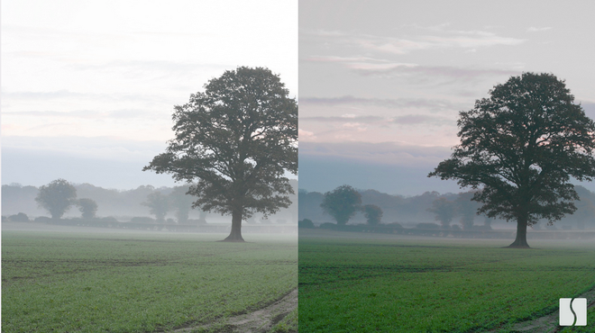 iPhone 12 chụp ảnh xuyên bụi và sương mù: Bí mật được Apple ẩn giấu có trở thành cơn sốt mới? - Ảnh 2.
