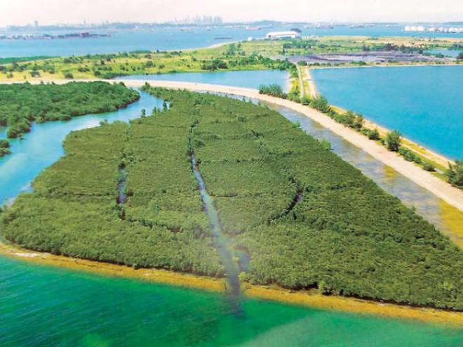 Nghệ thuật xử lý rác ở đất nước siêu sạch Singapore: 90% rác biến thành điện, 10% trở thành đảo du lịch - Ảnh 8.