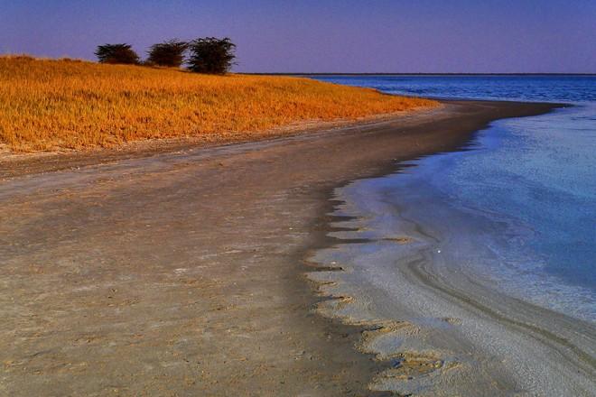 """Choáng với sự sống đẹp huy hoàng tại chảo muối được mệnh danh là """"Vùng đất chết"""" - Ảnh 5."""