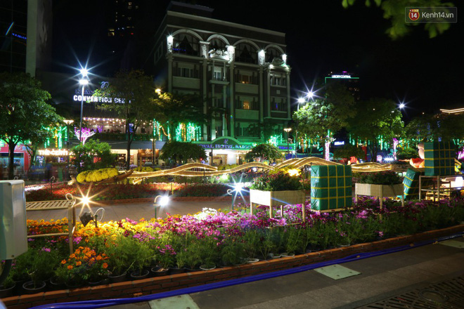 Đường hoa Nguyễn Huệ rực rỡ trong đêm khai mạc, hàng ngàn người chen nhau vào du xuân - Ảnh 9.