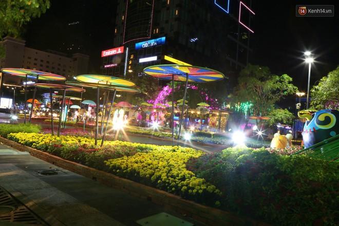 Đường hoa Nguyễn Huệ rực rỡ trong đêm khai mạc, hàng ngàn người chen nhau vào du xuân - Ảnh 10.