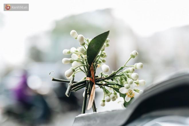 Hoa bưởi tháng 2 theo gió xuống phố Hà Nội, giá lên đến 300.000 đồng/kg vẫn cháy hàng - Ảnh 4.