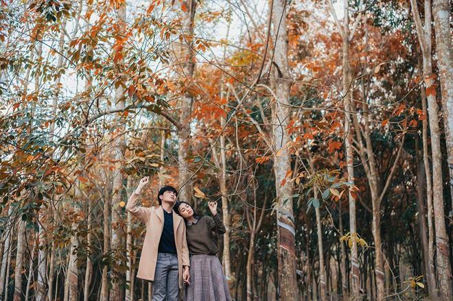 Cực hot: Hướng dẫn đường đi đến rừng cao su lá vàng đẹp như Hàn Quốc cách Sài Gòn chỉ 60km - Ảnh 5.