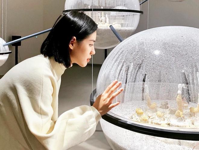 Mê mẩn với Bảo tàng Mỹ thuật Đài Bắc: Cứ ngỡ lạc vào xứ sở thần tiên nào đấy nữa chứ! - Ảnh 2.
