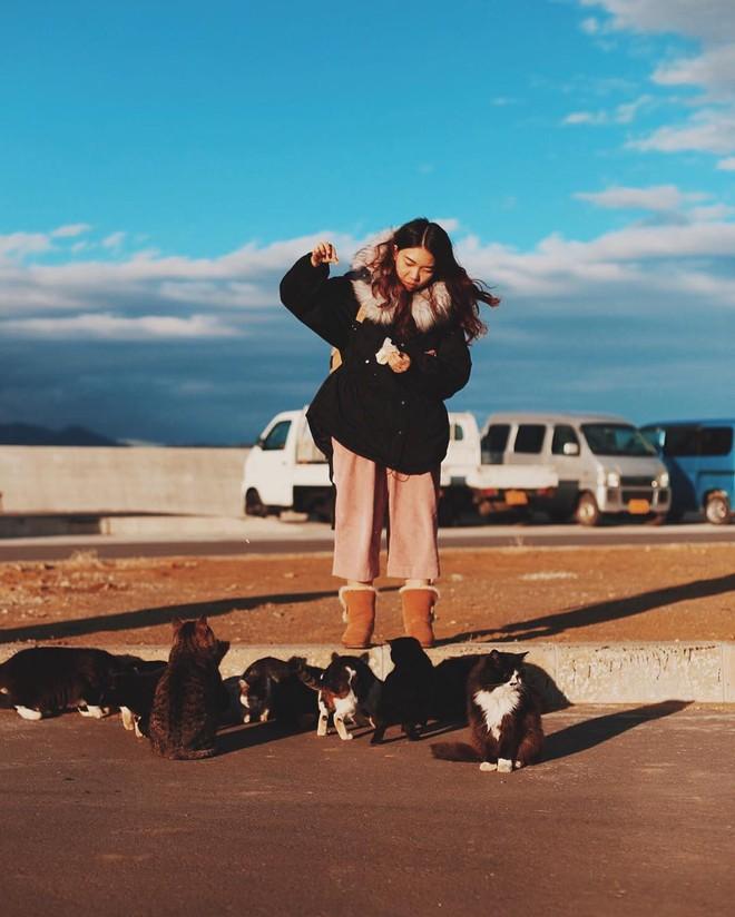 Đến thăm đảo mèo lớn nhất Nhật Bản, hội con sen đến đây thì đảm bảo sướng phát ngất! - Ảnh 2.
