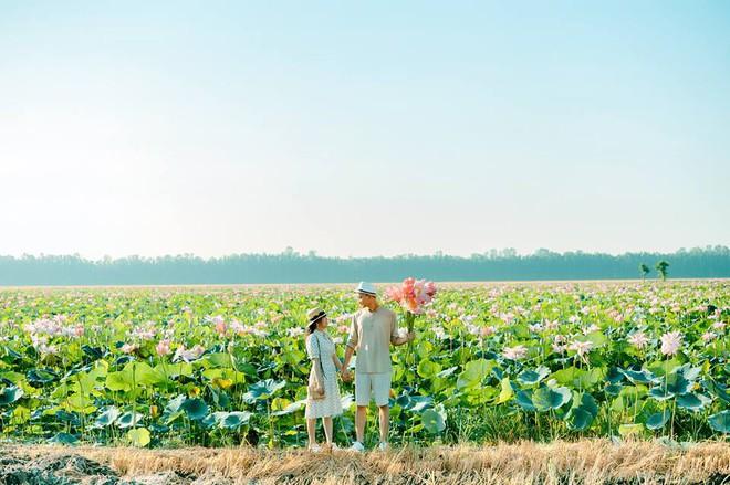 Đã lùng ra địa chỉ cánh đồng sen rộng bát ngát tại An Giang: Thiên đường sống ảo là đây chứ đâu nữa! - Ảnh 6.