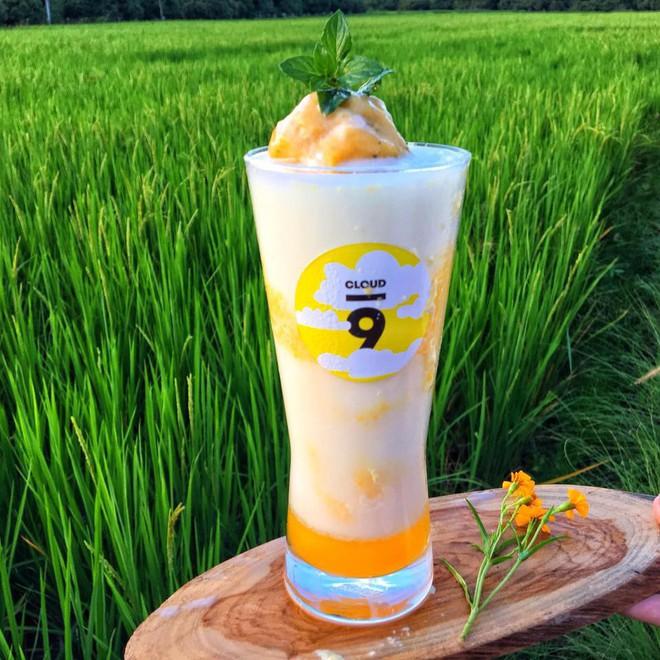 Phát hiện quán cà phê giữa cánh đồng ở Chiangmai (Thái Lan) lên ảnh đẹp không thua gì phim điện ảnh - Ảnh 8.