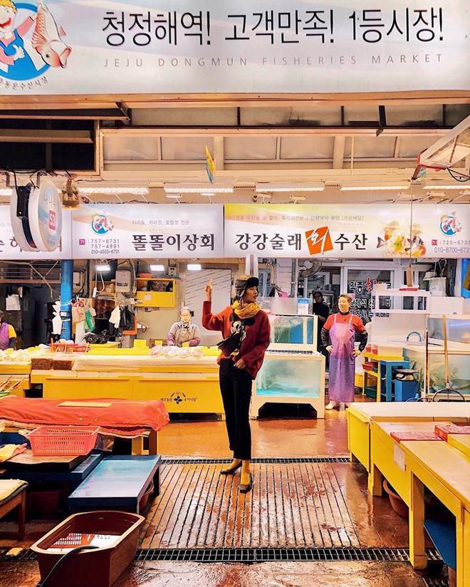 10 sự thật hết hồn về đảo Jeju được tiết lộ bởi Cao Thiên Trang: Điều cuối cùng khiến dân tình ngã ngửa! - Ảnh 6.