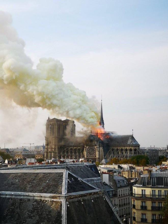 Trước khi sụp đổ một phần vì vụ cháy chấn động, Nhà thờ Đức Bà ở Paris từng là biểu tượng bình yên của cả nước Pháp - Ảnh 1.