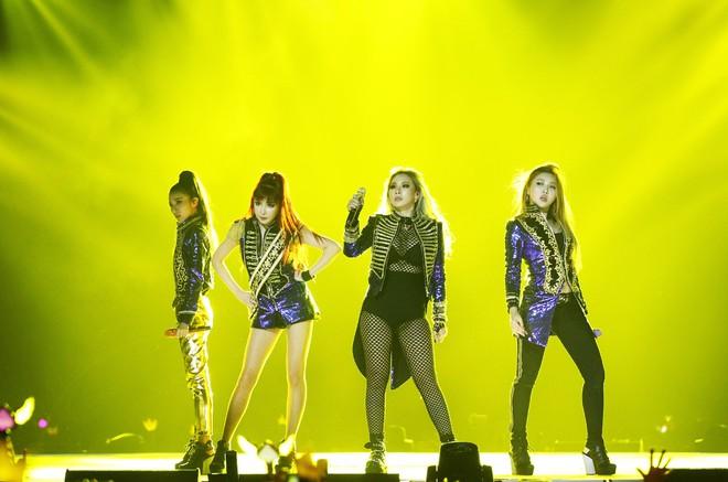 Báo Mỹ khẳng định BTS và 2NE1 nếu được diễn Coachella cũng không bằng BlackPink, cư dân mạng nghĩ sao? - Ảnh 1.
