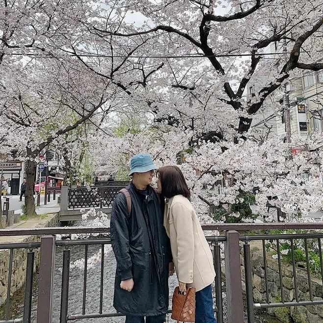 Không Nhật Bản thì Hàn Quốc, cảm giác như cả thế giới đều đi ngắm hoa anh đào hết rồi! - Ảnh 17.