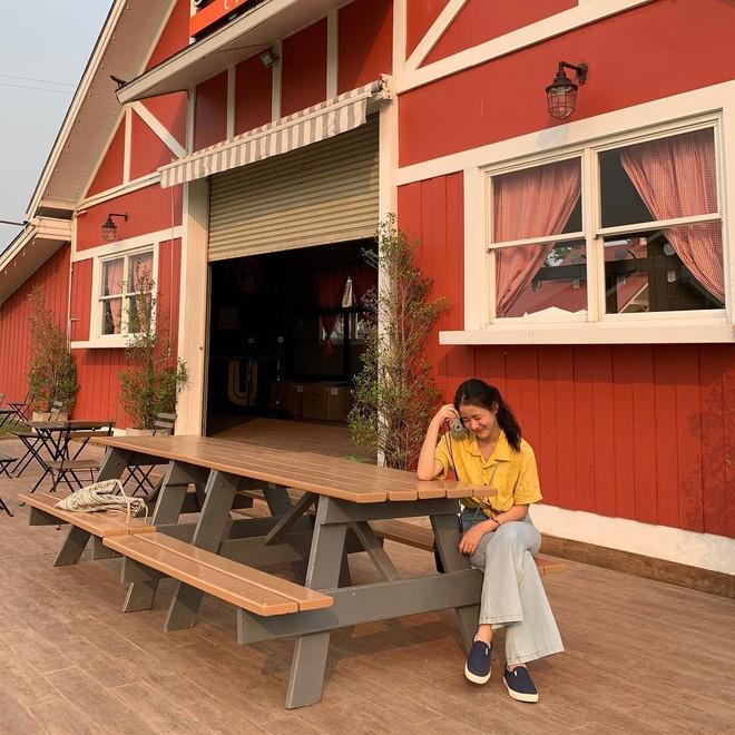 Đã tìm ra toạ độ của trang trại đẹp tựa trời Âu khiến giới trẻ thi nhau đến check-in rần rần - Ảnh 2.