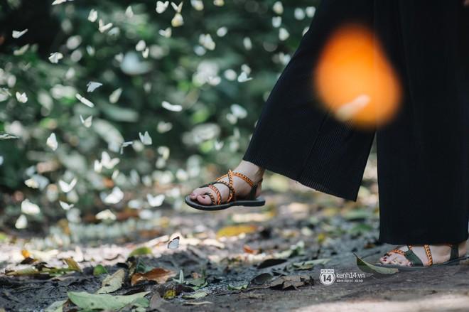 Chuyến đi Cúc Phương những ngày cuối mùa bướm rừng: Chốn thần tiên có vẻ đẹp riêng của sự muộn màng - Ảnh 13.
