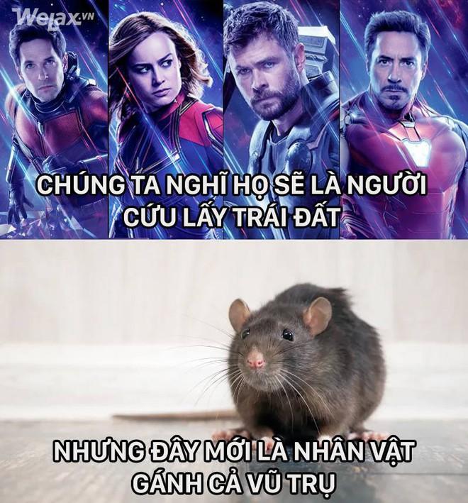 Bảo sao Avengers: Endgame mãi không hết hot khi cư dân mạng cứ chế ra meme đủ kiểu xoay quanh bộ phim này - Ảnh 3.