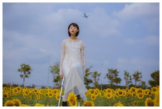 Hốt hoảng trước cảnh tượng hoang tàn của vườn hướng dương hot nhất Sài Gòn: Hoa héo úa, rác ngập tràn khắp nơi! - Ảnh 8.