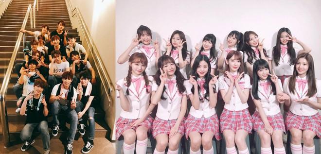 Khó tin: fan hai nhóm nhạc Kpop đình đám hoà hoãn với nhau chỉ nhờ vào một miếng... xúc xích - Ảnh 1.