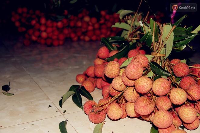 Người dân Bắc Giang dậy từ 3 giờ sáng để bẻ vải, thức xuyên đêm vặt lá cho kịp thời vụ - Ảnh 8.