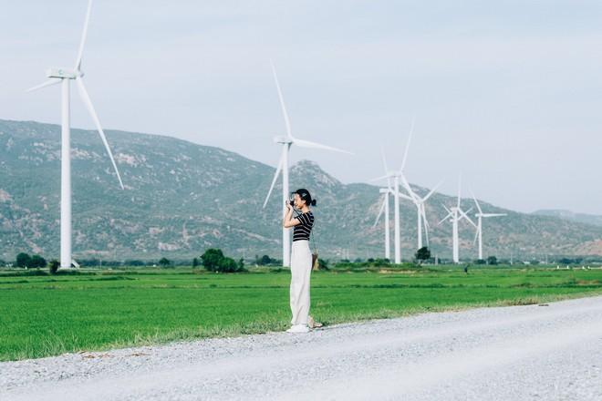 """Cánh đồng quạt gió và vườn nho Ba Mọi tại Ninh Thuận: Hai địa điểm check-in """"siêu to khổng lồ"""", lại còn miễn phí nữa chứ! - Ảnh 5."""