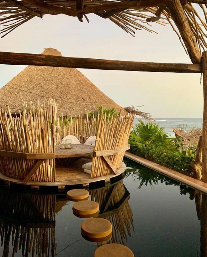 Resort trên cây ở Mexico: Có cả trăm góc sống ảo đẹp tung chảo nhưng chỉ dành cho khách du lịch trên 18 tuổi - Ảnh 9.