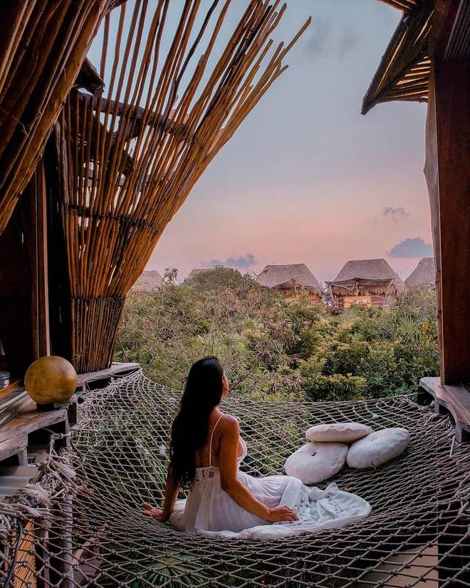 Resort trên cây ở Mexico: Có cả trăm góc sống ảo đẹp tung chảo nhưng chỉ dành cho khách du lịch trên 18 tuổi - Ảnh 5.