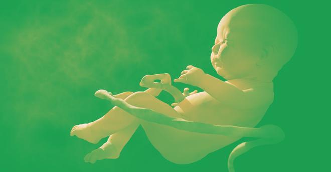 2 em bé chỉnh sửa gene từng gây tranh cãi dữ dội tại Trung Quốc đang có nguy cơ chết sớm - Ảnh 1.
