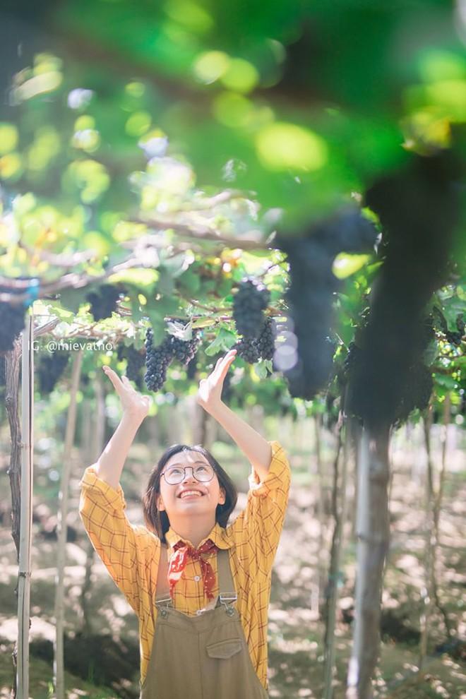 Bộ ảnh du lịch Ninh Thuận của cặp đôi đến từ Hà Nội khiến dân tình thích thú: Mới nhìn thôi đã thấy chill phết! - Ảnh 9.