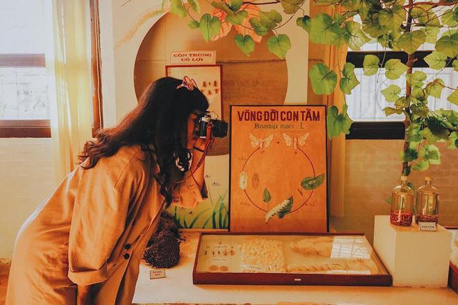 Có gì ở phân viện sinh học Đà Lạt, tọa độ sống ảo hot đến nỗi Sơn Tùng M-TP và giới trẻ phải check-in ầm ầm? - Ảnh 9.