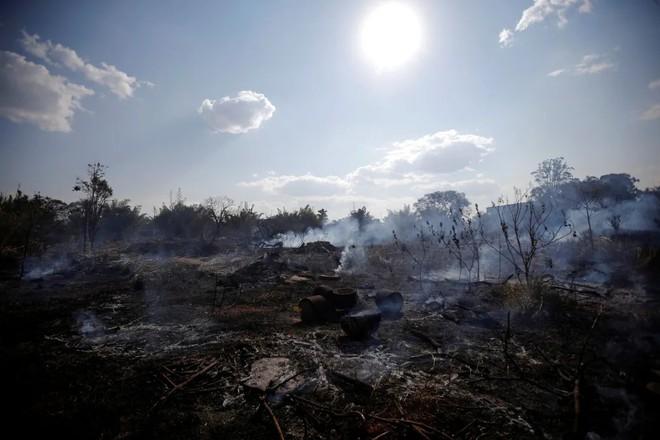 Cái kết của một hành tinh nếu rừng Amazon biến mất: Đừng nói cứu thế giới, bạn đang tự cứu chính mình mà thôi! - Ảnh 4.