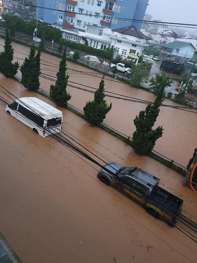 Đà Lạt ngập chưa từng thấy sau trận mưa lớn kéo dài, nhiều ô tô chìm trong biển nước - Ảnh 2.