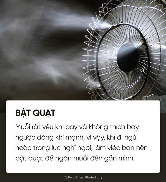 Dịch sốt xuất huyết lại bùng lên, đừng bỏ qua những cách đuổi muỗi đơn giản dễ áp dụng này để muỗi không có cơ hội hại bạn - Ảnh 3.