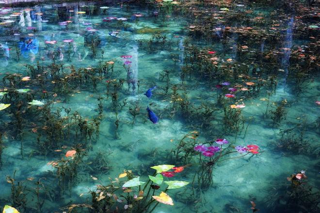 Trầm trồ trước hồ đẹp như tranh sơn dầu ở Nhật Bản - ảnh 4