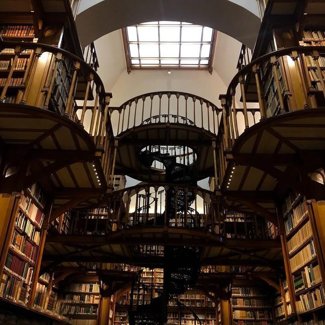 Đừng vội chê thư viện nhàm chán nếu như bạn chưa bao giờ biết đến địa điểm sang chảnh và lộng lẫy này! - Ảnh 5.