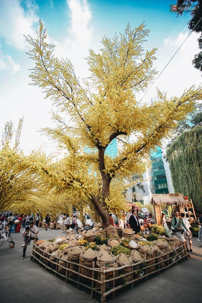 Nhiều ông, bà đồ trẻ cho chữ trên phố ông đồ Phạm Ngọc Thạch dịp Tết Canh Tý 2020 - Ảnh 2.