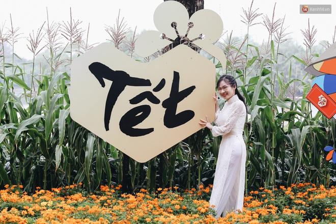 Phố nhà giàu Phú Mỹ Hưng đón Tết Canh Tý với đường hoa xuân đầy lúa và bắp ngô, tái hiện khung cảnh làng quê bình dị - Ảnh 9.