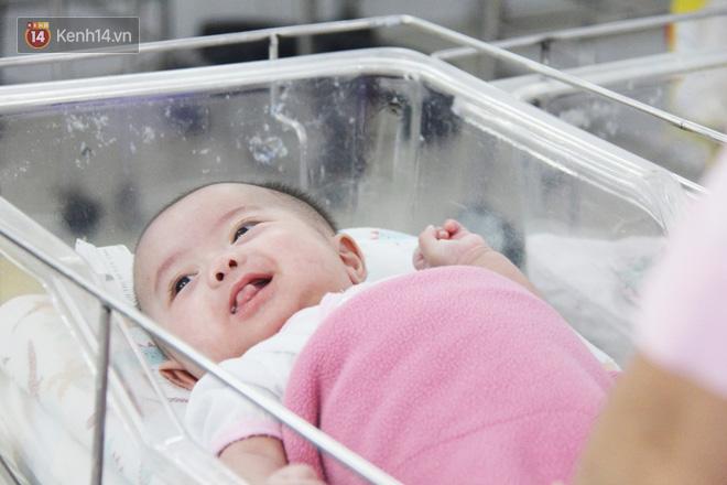 Mẹ đẻ ở bệnh viện Từ Dũ rồi bỏ đi biệt tích, 3 bé gái 4 tháng tuổi phải chuyển đến nơi nuôi trẻ mồ côi trước Tết - Ảnh 3.